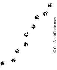 pawprints, 2, chien
