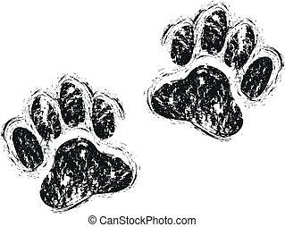 paws, собака