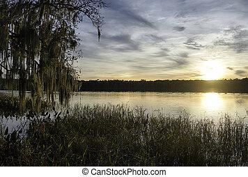 Paynes Prairie State Park in Florida.