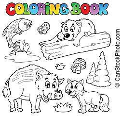 pays boisé, coloration, animaux, livre