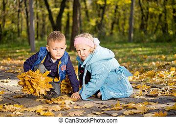 pays boisé, jeune, ensemble, enfants, automne, jouer