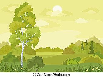 pays boisé, paysage