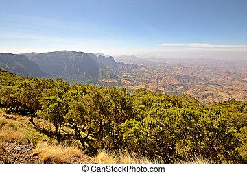 pays montagne, éthiopien