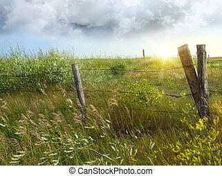 pays, vieux, barrière, prairies