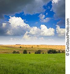 paysage, été