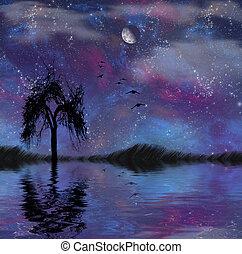 paysage, étoiles