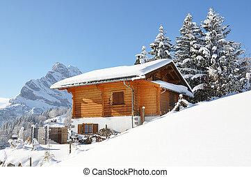 paysage, alpin