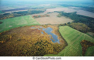 paysage automne, champ