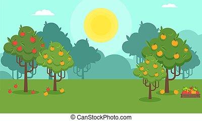 paysage automne, naturel, verger pomme