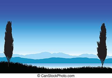 paysage, beau, arbres