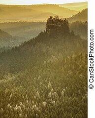 paysage, beau, image, brumeux, levers de soleil, automne, vallonné, modifié tonalité