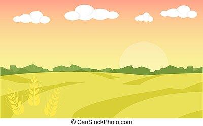 paysage., blé, illustration., champ, ferme, illustration, arrière-plan., vecteur, paysage, levers de soleil