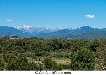 paysage, bleu, forêts, ciel, montagnes vertes, coup