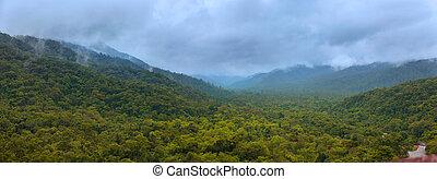 paysage, brésilien