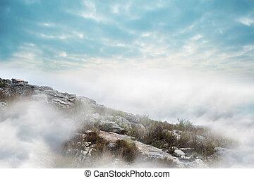 paysage, brumeux