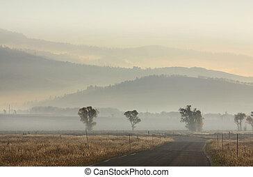 paysage brumeux