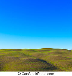paysage., collines, rouler, tuscany:, siena., typique