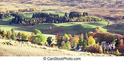 paysage, |, coloré, arbres, bruyère, automne, perthshire, ...