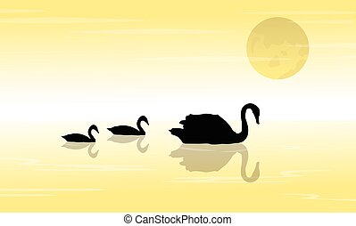 paysage, coucher soleil, cygne, silhouette