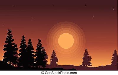 paysage, coucher soleil, impeccable, silhouette