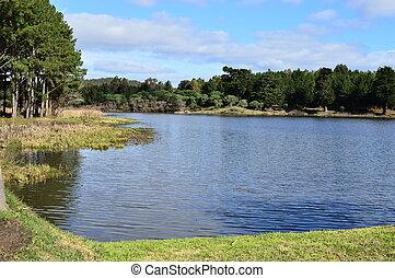 paysage, dans, a, lac