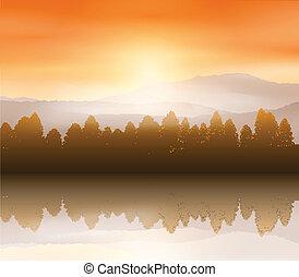 paysage, forêt, fond