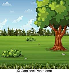 paysage, forêt verte, fond
