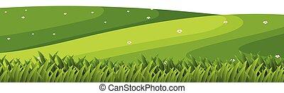 paysage, herbe, collines vertes, fond