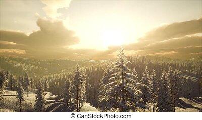 paysage hiver, brumeux, coucher soleil, montagne
