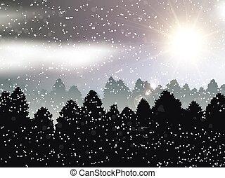 paysage hiver, fond