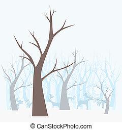 paysage., hiver, forêt