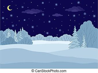 paysage, hiver, forêt, nuit