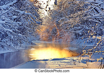 paysage, hiver