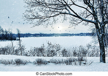 paysage, hiver, négligence, lac