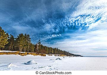 paysage., hiver, ob, rivière, occidental, sibérie