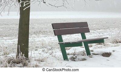 paysage., hiver, scène neige, banc, vert, bench., brumeux