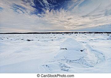 paysage hiver, scène