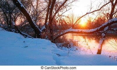 paysage, hiver, sunset.