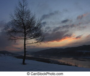 paysage., hiver