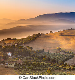 paysage, italie, sur, matin, brouillard, toscane
