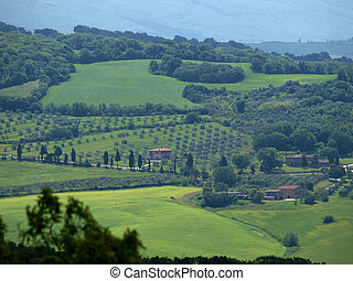 paysage, italiy, d?orcia., val, tuscany.