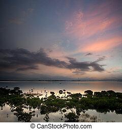 paysage, lac, levers de soleil, matin