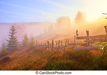 paysage montagne, à, brouillard