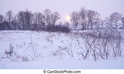 paysage, nature hiver, sunset., beau