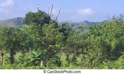paysage, naturel, mouvement, dominicain