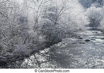 paysage, neigeux, comté, sevier, rivière, tennessee