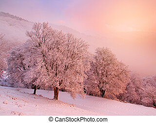 paysage., neigeux