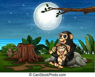 paysage, nuit, avoir, chimpanzé, amusement
