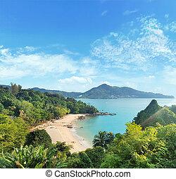 paysage, océan, asiatique, beautoful, rainforest