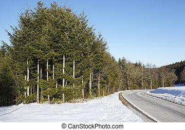 paysage, par, sylvan, route, neige